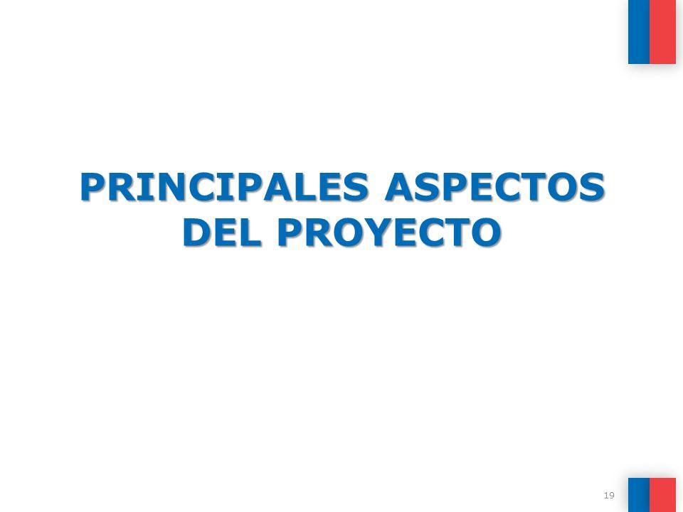 PRINCIPALES ASPECTOS DEL PROYECTO 19