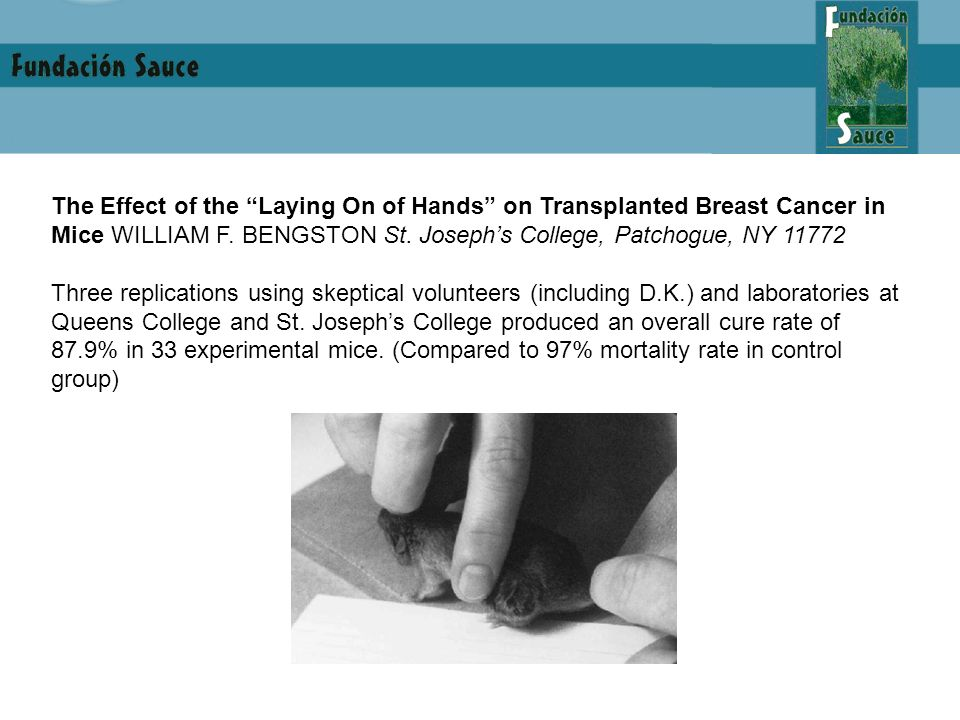 The Effect of the Laying On of Hands on Transplanted Breast Cancer in Mice WILLIAM F. BENGSTON St. Josephs College, Patchogue, NY 11772 Three replicat