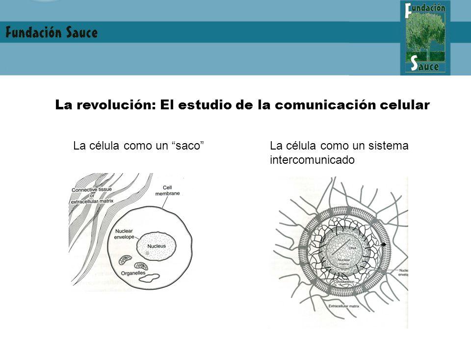 La revolución: El estudio de la comunicación celular La célula como un sacoLa célula como un sistema intercomunicado