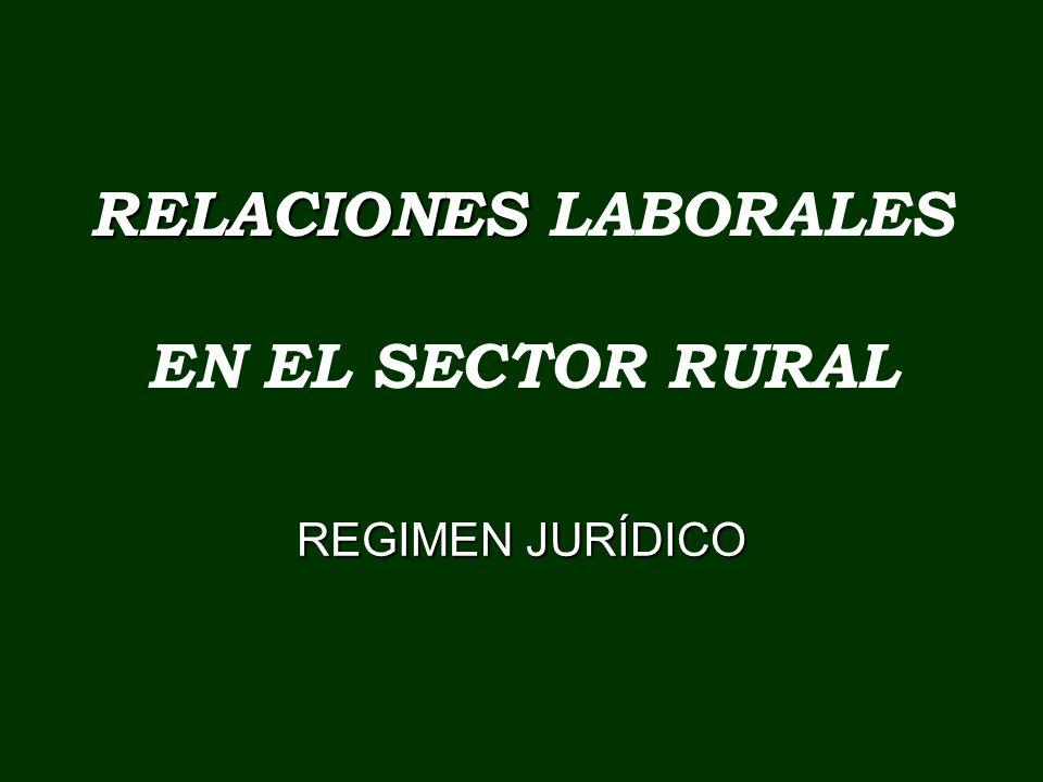 RELACIONES RELACIONES LABORALES EN EL SECTOR RURAL REGIMEN JURÍDICO