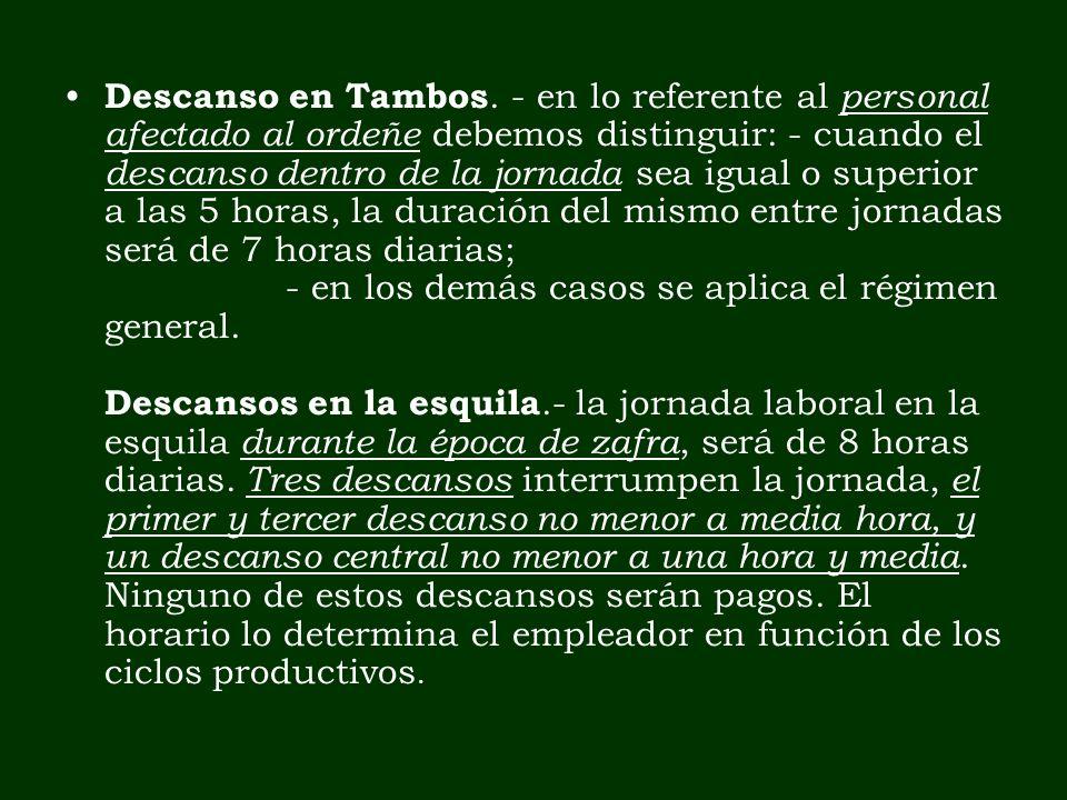 Descanso en Tambos. - en lo referente al personal afectado al ordeñe debemos distinguir: - cuando el descanso dentro de la jornada sea igual o superio