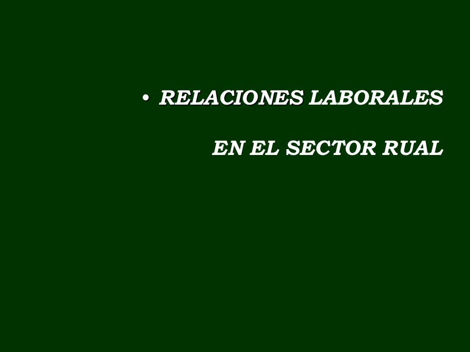 RELACIONES RELACIONES LABORALES EN EL SECTOR RUAL