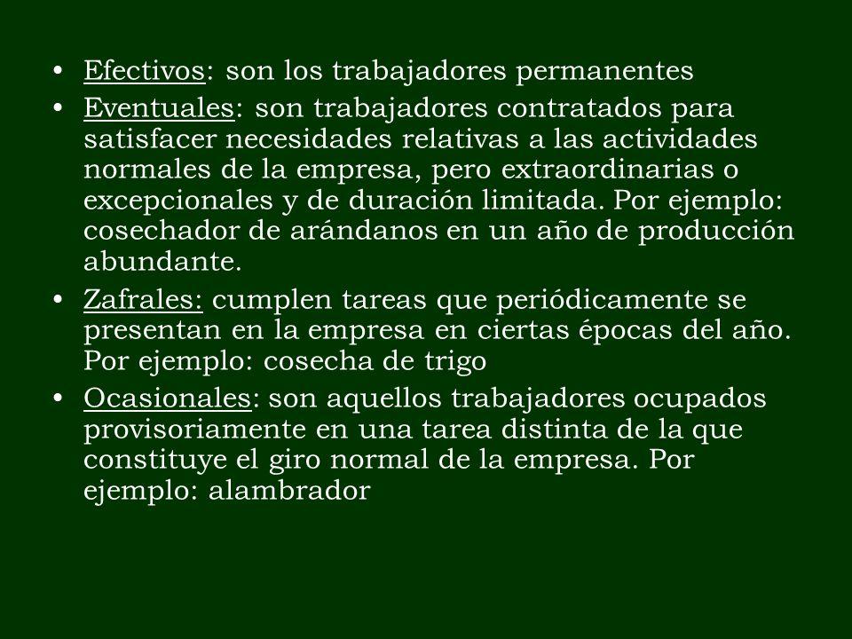 Efectivos: son los trabajadores permanentes Eventuales: son trabajadores contratados para satisfacer necesidades relativas a las actividades normales
