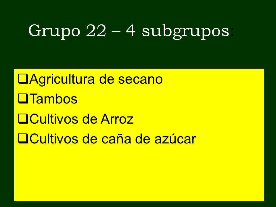 Grupo 22 – 4 subgrupos: Agricultura de secano Tambos Cultivos de Arroz Cultivos de caña de azúcar