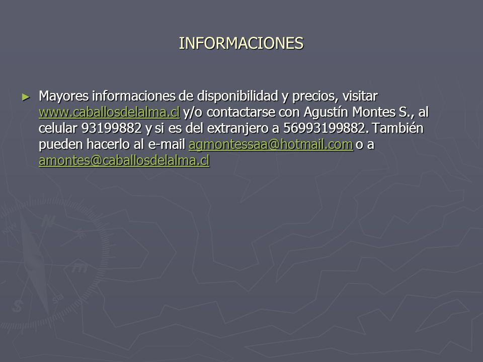 INFORMACIONES Mayores informaciones de disponibilidad y precios, visitar www.caballosdelalma.cl y/o contactarse con Agustín Montes S., al celular 9319