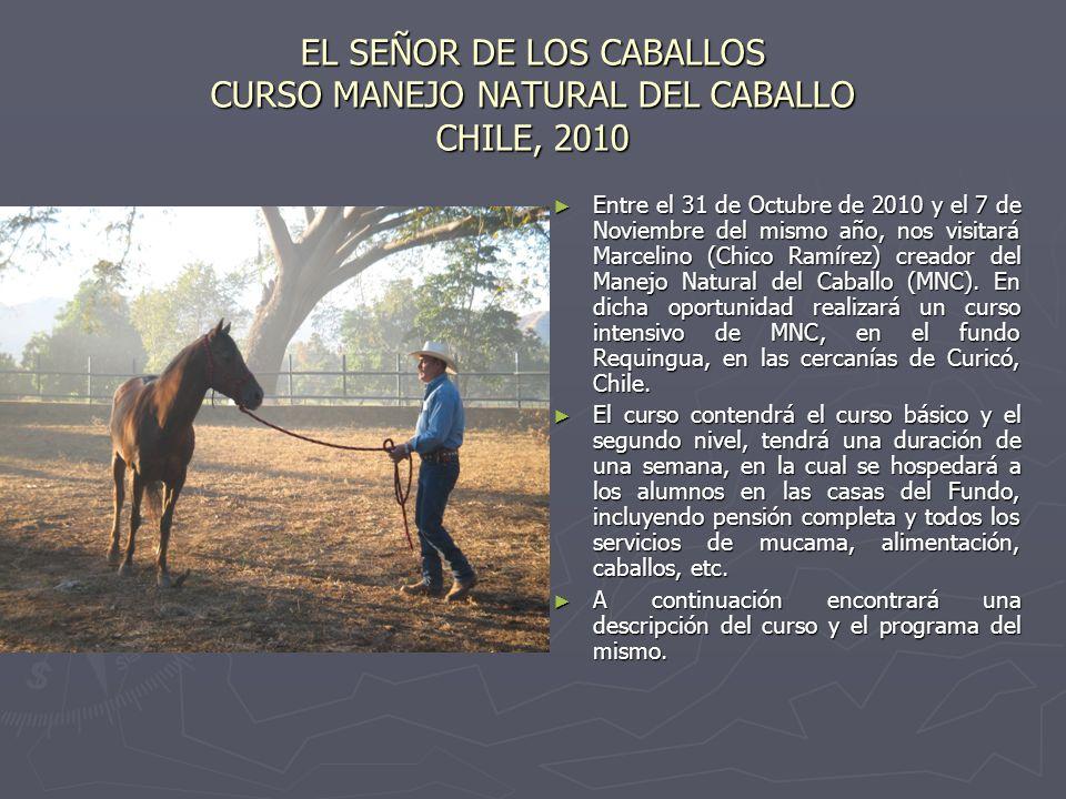 EL SEÑOR DE LOS CABALLOS CURSO MANEJO NATURAL DEL CABALLO CHILE, 2010 Entre el 31 de Octubre de 2010 y el 7 de Noviembre del mismo año, nos visitará Marcelino (Chico Ramírez) creador del Manejo Natural del Caballo (MNC).