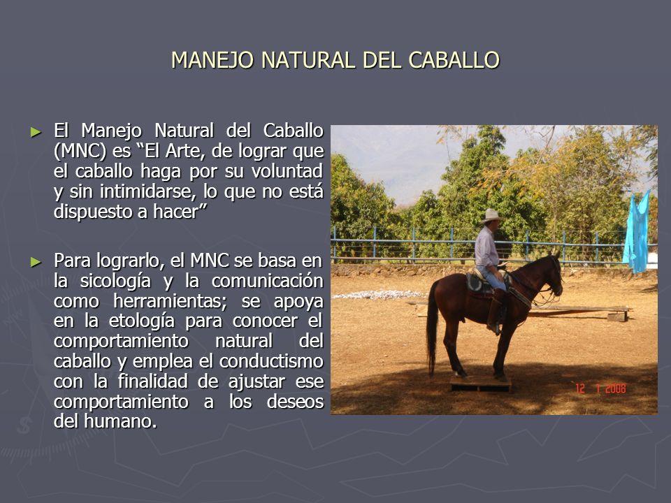 MANEJO NATURAL DEL CABALLO El Manejo Natural del Caballo (MNC) es El Arte, de lograr que el caballo haga por su voluntad y sin intimidarse, lo que no está dispuesto a hacer El Manejo Natural del Caballo (MNC) es El Arte, de lograr que el caballo haga por su voluntad y sin intimidarse, lo que no está dispuesto a hacer Para lograrlo, el MNC se basa en la sicología y la comunicación como herramientas; se apoya en la etología para conocer el comportamiento natural del caballo y emplea el conductismo con la finalidad de ajustar ese comportamiento a los deseos del humano.