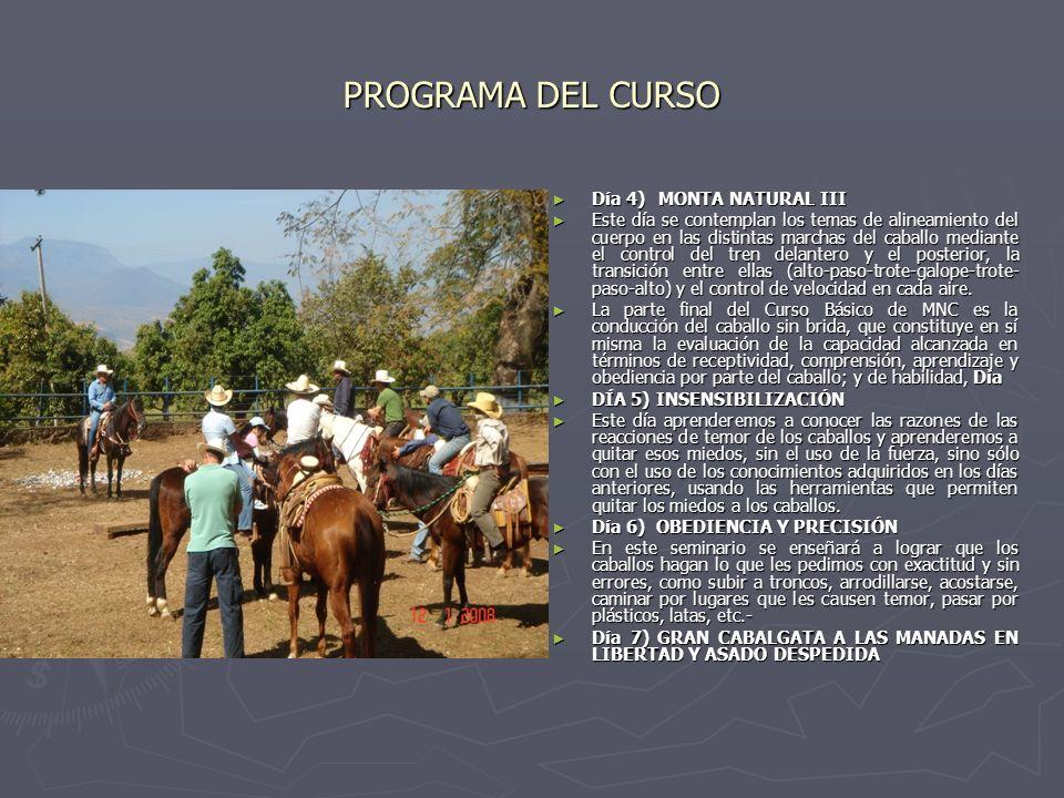 PROGRAMA DEL CURSO Día 4)MONTA NATURAL III Este día se contemplan los temas de alineamiento del cuerpo en las distintas marchas del caballo mediante e
