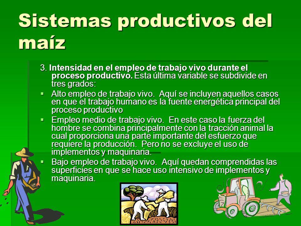 Sistemas productivos del maíz 3. Intensidad en el empleo de trabajo vivo durante el proceso productivo. Esta última variable se subdivide en tres grad