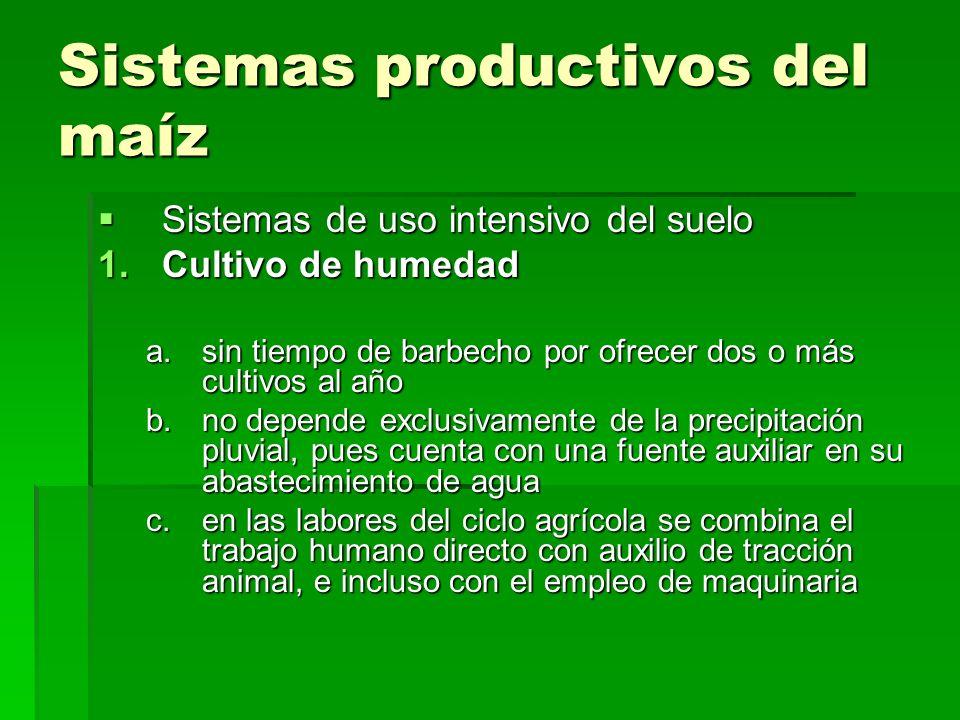 Sistemas productivos del maíz Sistemas de uso intensivo del suelo Sistemas de uso intensivo del suelo 1.Cultivo de humedad a.sin tiempo de barbecho po