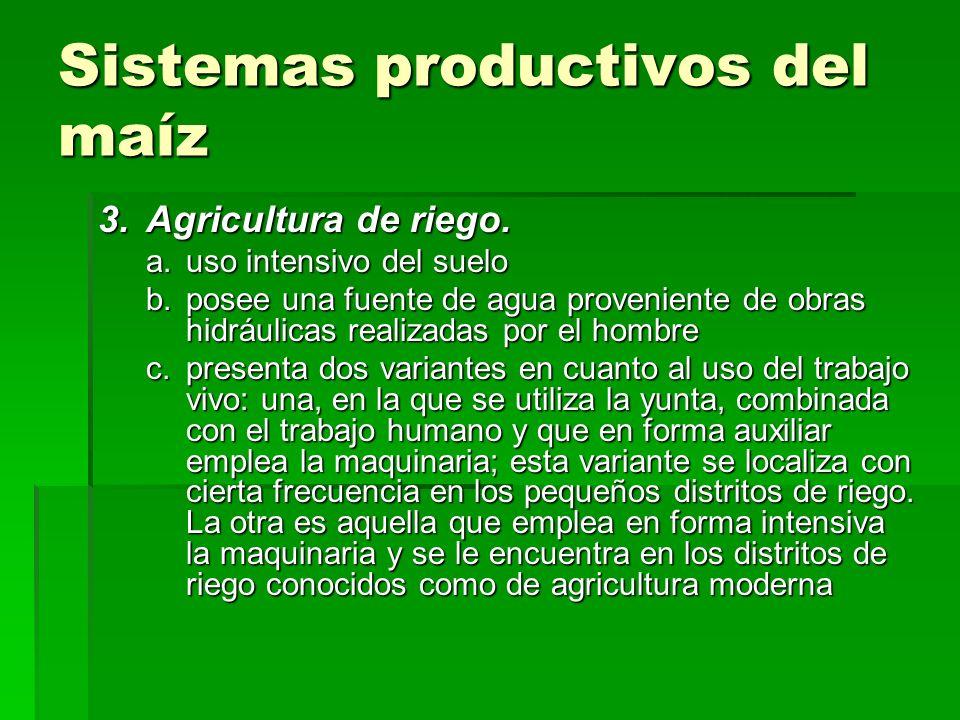 Sistemas productivos del maíz 3.Agricultura de riego. a.uso intensivo del suelo b.posee una fuente de agua proveniente de obras hidráulicas realizadas
