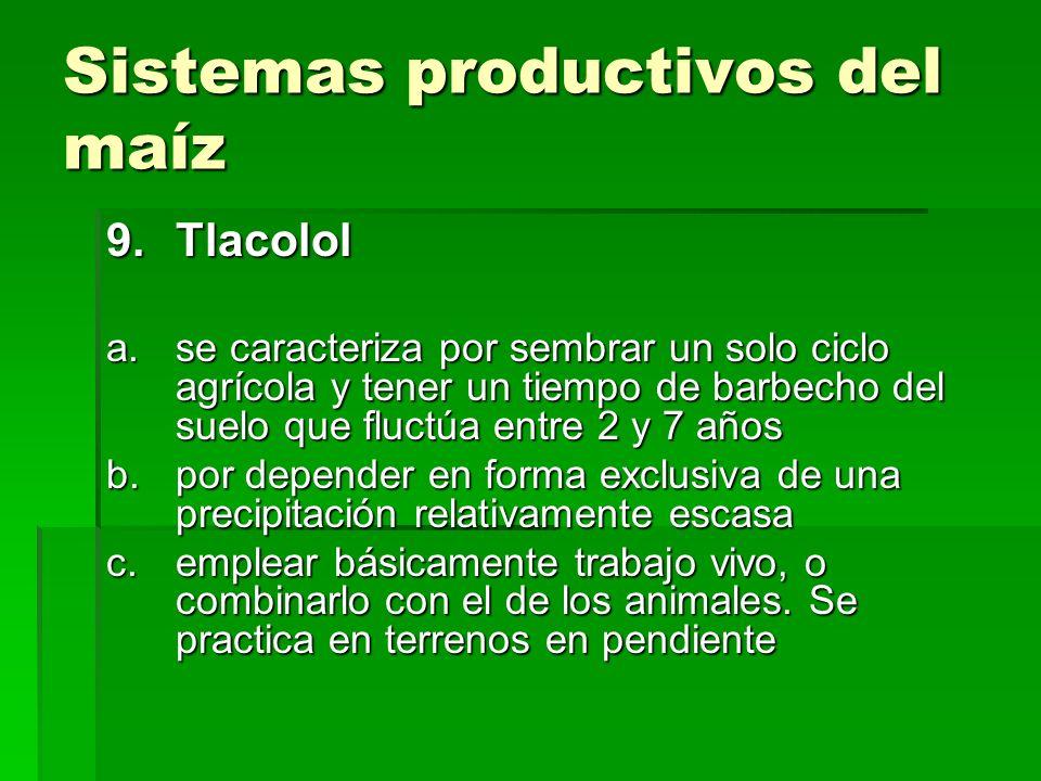 Sistemas productivos del maíz 9.Tlacolol a.se caracteriza por sembrar un solo ciclo agrícola y tener un tiempo de barbecho del suelo que fluctúa entre