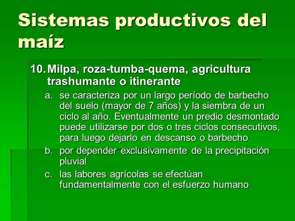 Sistemas productivos del maíz 10.Milpa, roza-tumba-quema, agricultura trashumante o itinerante a.se caracteriza por un largo período de barbecho del s
