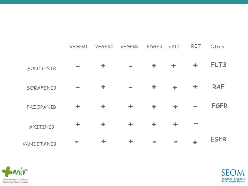 VEGFR1VEGFR2VEGFR3PDGFRcKIT RET Otros -+++ --++ RAF +++ ++ +++++ + SUNITINIB SORAFENIB PAZOPANIB AXITINIB - VANDETANIB - ++ - + - + + FLT3 - FGFR - EG