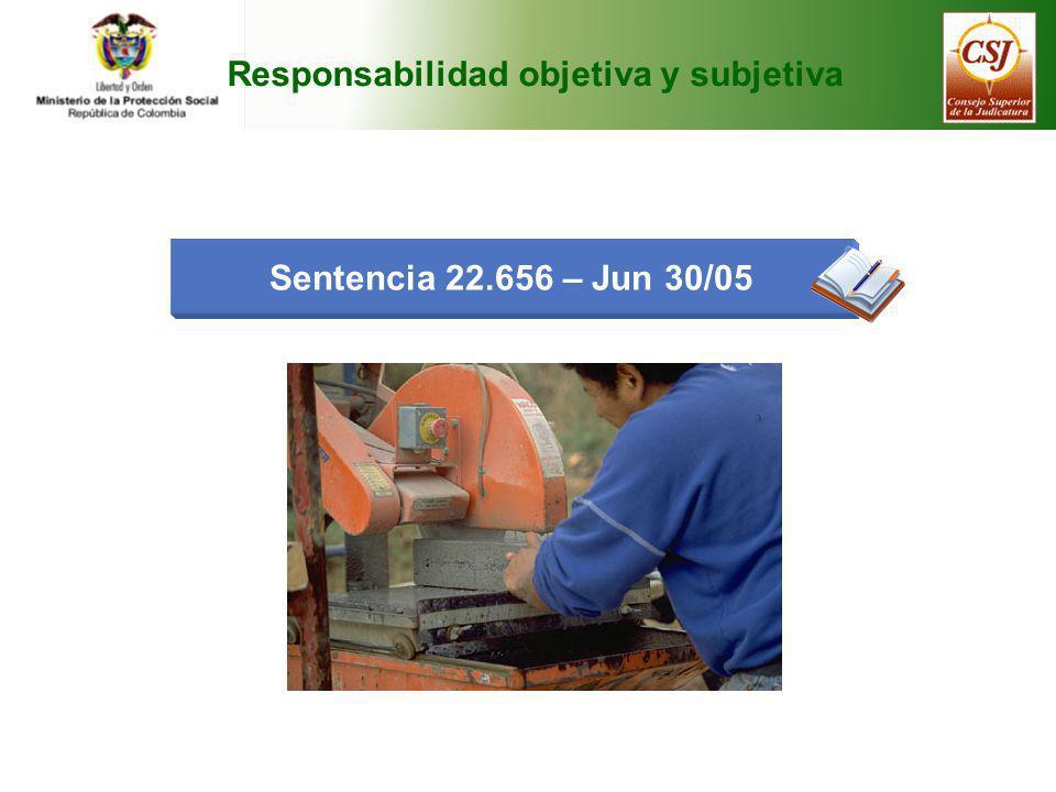 Responsabilidad objetiva y subjetiva Sentencia 22.656 – Jun 30/05