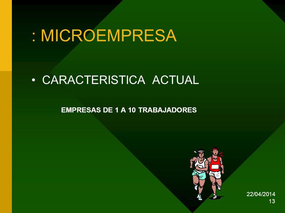 22/04/2014 13 : MICROEMPRESA CARACTERISTICA ACTUAL EMPRESAS DE 1 A 10 TRABAJADORES