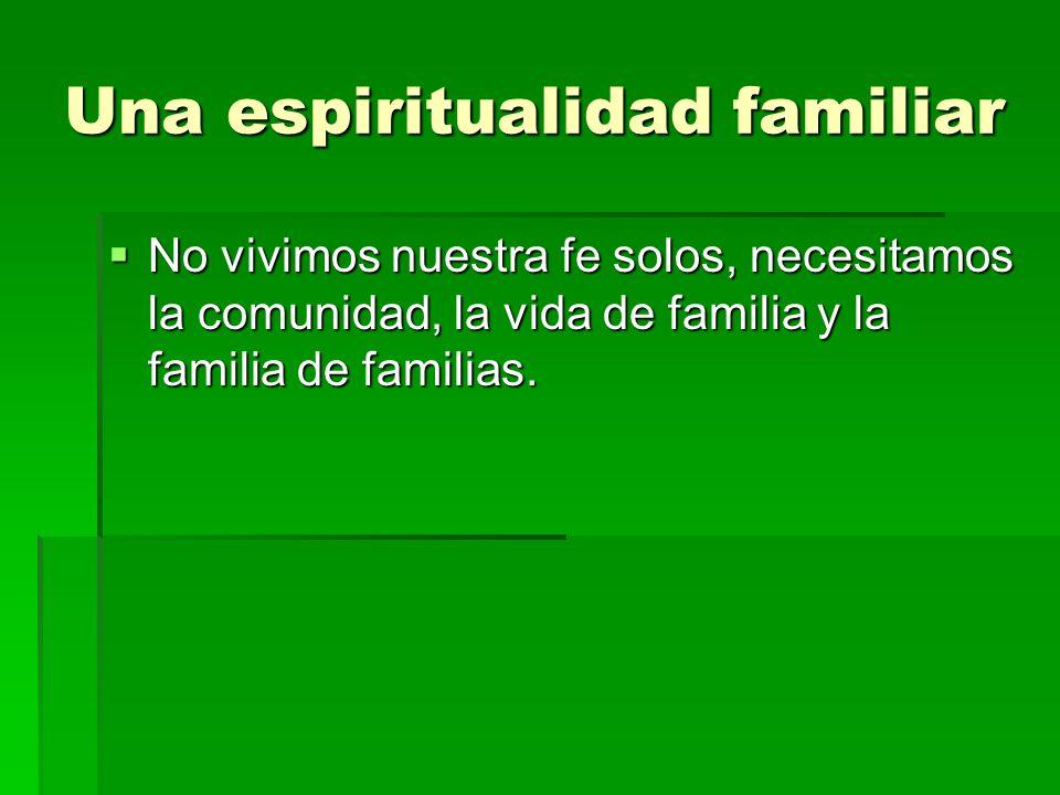 Una espiritualidad familiar No vivimos nuestra fe solos, necesitamos la comunidad, la vida de familia y la familia de familias. No vivimos nuestra fe