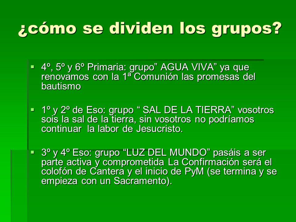 ¿cómo se dividen los grupos? 4º, 5º y 6º Primaria: grupo AGUA VIVA ya que renovamos con la 1ª Comunión las promesas del bautismo 4º, 5º y 6º Primaria: