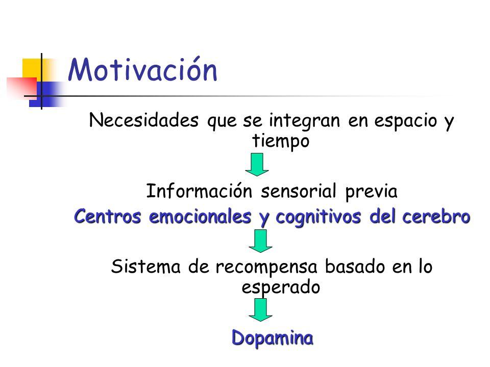 Motivación Necesidades que se integran en espacio y tiempo Información sensorial previa Centros emocionales y cognitivos del cerebro Sistema de recomp