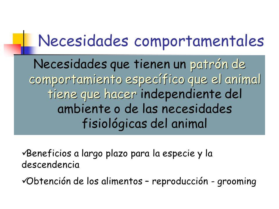 Necesidades comportamentales patrón de comportamiento específico que el animal tiene que hacer Necesidades que tienen un patrón de comportamiento espe