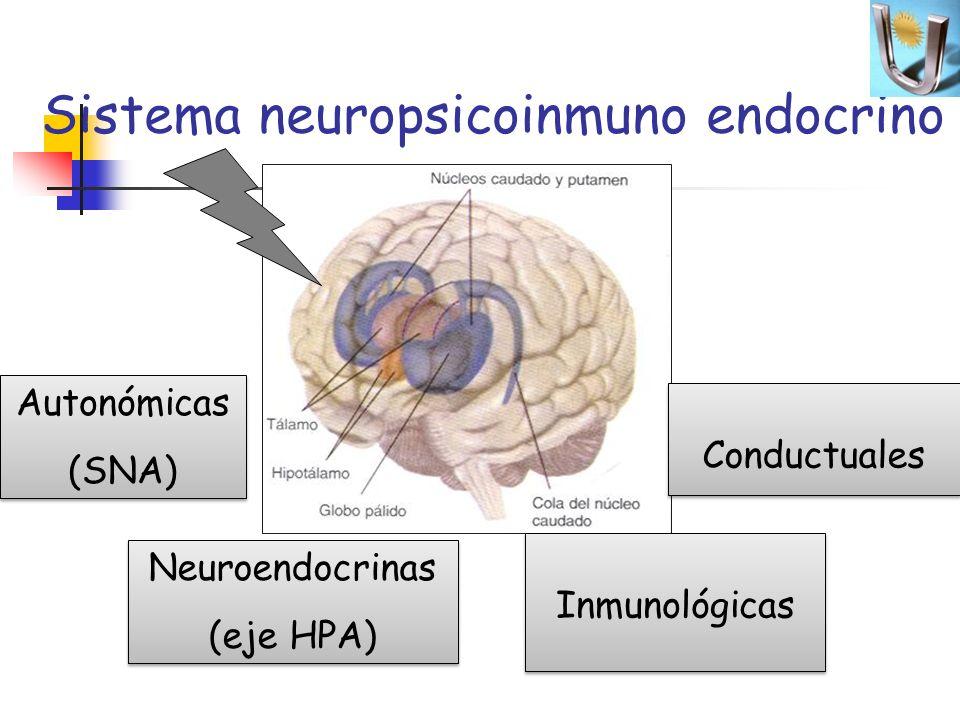 Sistema neuropsicoinmuno endocrino Autonómicas (SNA) Autonómicas (SNA) Neuroendocrinas (eje HPA) Neuroendocrinas (eje HPA) Inmunológicas Conductuales