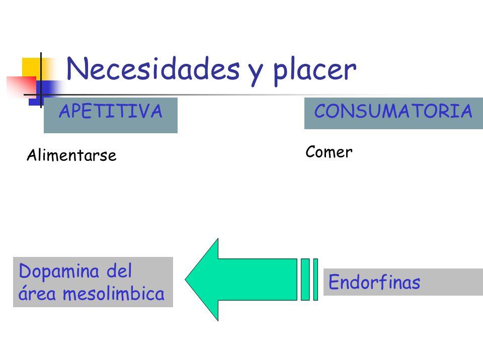 Necesidades y placer APETITIVACONSUMATORIA Alimentarse Dopamina del área mesolimbica Endorfinas Comer