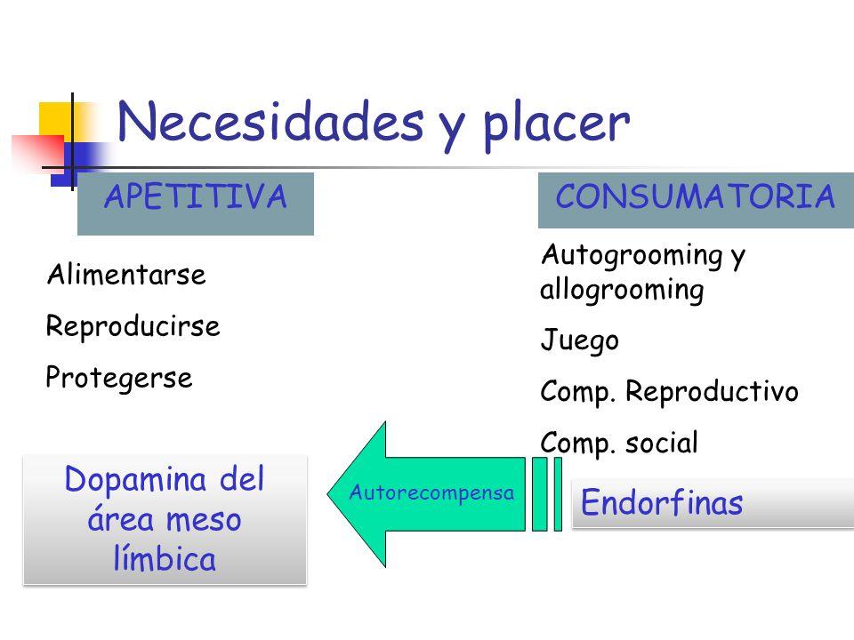 Comportamientos innatos Comportamientos aprendidos Domesticación: adaptación por aprendizaje Alimentarse Reproducirse Protegerse