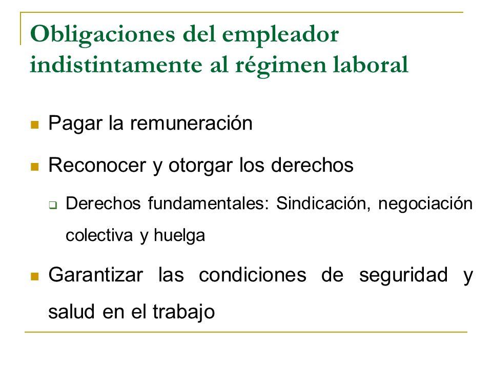 Obligaciones del empleador indistintamente al régimen laboral Pagar la remuneración Reconocer y otorgar los derechos Derechos fundamentales: Sindicaci