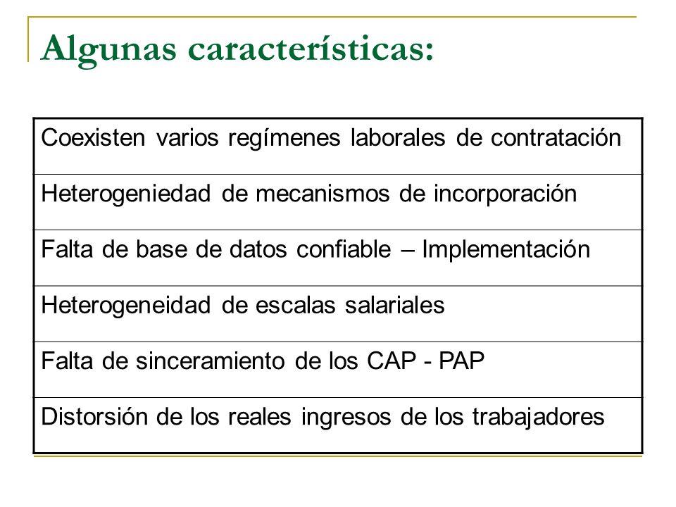 Algunas características: Coexisten varios regímenes laborales de contratación Heterogeniedad de mecanismos de incorporación Falta de base de datos confiable – Implementación Heterogeneidad de escalas salariales Falta de sinceramiento de los CAP - PAP Distorsión de los reales ingresos de los trabajadores
