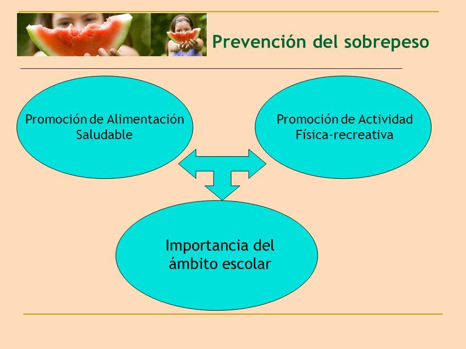 Prevención del sobrepeso Promoción de Actividad Física-recreativa Promoción de Alimentación Saludable Importancia del ámbito escolar