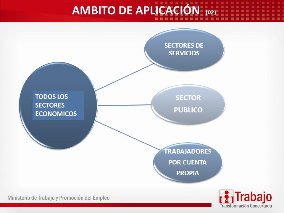 SECTORES DE SERVICIOS SECTOR PUBLICO TRABAJADORES POR CUENTA PROPIA AMBITO DE APLICACIÓN (02)