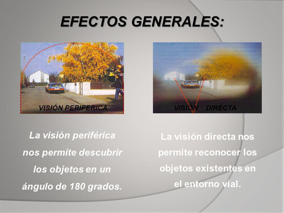 EFECTOS GENERALES: VISIÓN PERIFERICAVISIÓN DIRECTA La visión periférica nos permite descubrir los objetos en un ángulo de 180 grados. La visión direct
