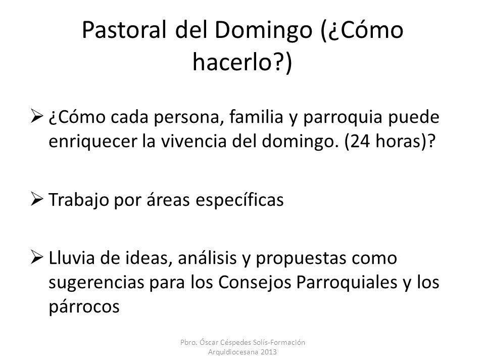 Pastoral del Domingo (¿Cómo hacerlo?) ¿Cómo cada persona, familia y parroquia puede enriquecer la vivencia del domingo. (24 horas)? Trabajo por áreas