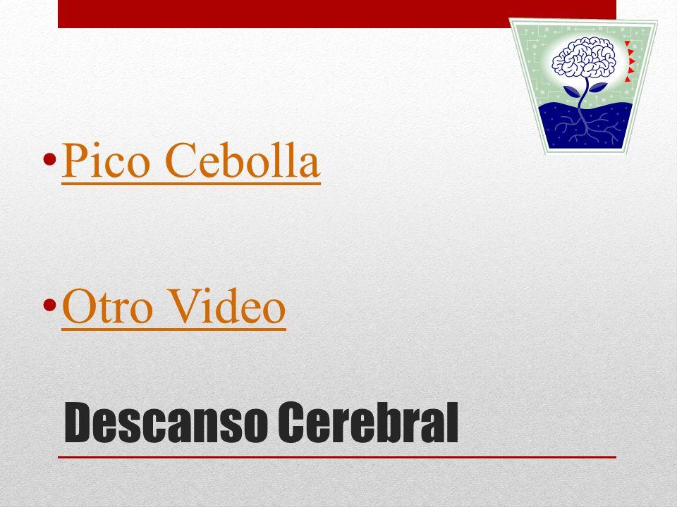 Descanso Cerebral Pico Cebolla Otro Video