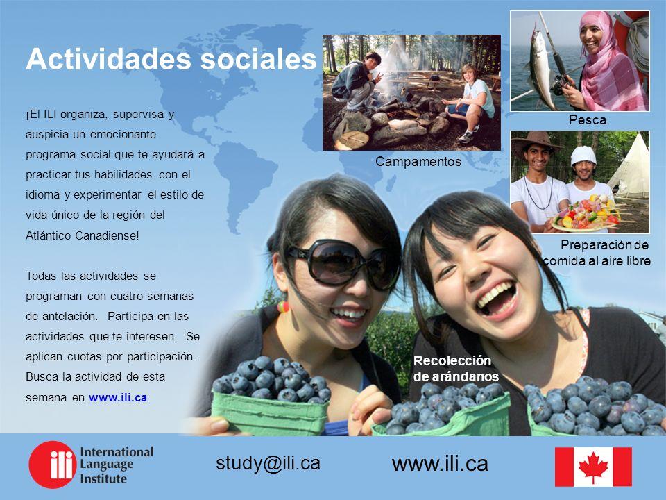 www.ili.ca study@ili.ca ¡El ILI organiza, supervisa y auspicia un emocionante programa social que te ayudará a practicar tus habilidades con el idioma y experimentar el estilo de vida único de la región del Atlántico Canadiense.