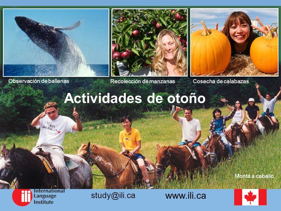 www.ili.ca study@ili.ca Observación de ballenas Actividades de otoño Recolección de manzanasCosecha de calabazas Monta a caballo