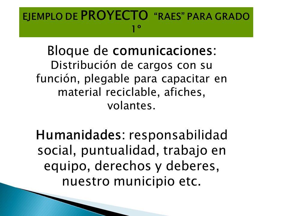 EJEMPLO DE PROYECTO RAES PARA GRADO 1º Bloque de comunicaciones: Distribución de cargos con su función, plegable para capacitar en material reciclable