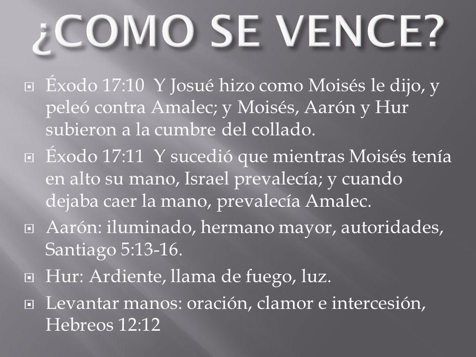 Éxodo 17:10 Y Josué hizo como Moisés le dijo, y peleó contra Amalec; y Moisés, Aarón y Hur subieron a la cumbre del collado. Éxodo 17:11 Y sucedió que