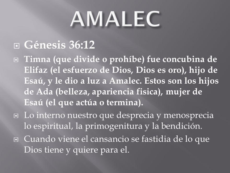 Génesis 36:12 Timna (que divide o prohíbe) fue concubina de Elifaz (el esfuerzo de Dios, Dios es oro), hijo de Esaú, y le dio a luz a Amalec.