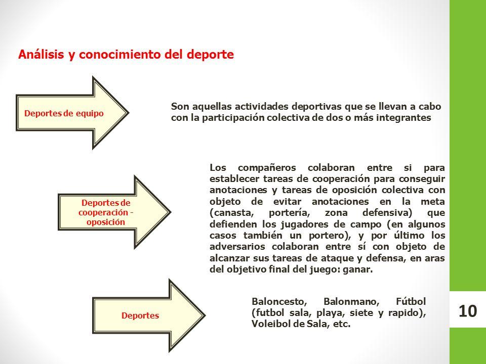 Deportes de equipo Deportes de cooperación - oposición Deportes Los compañeros colaboran entre si para establecer tareas de cooperación para conseguir