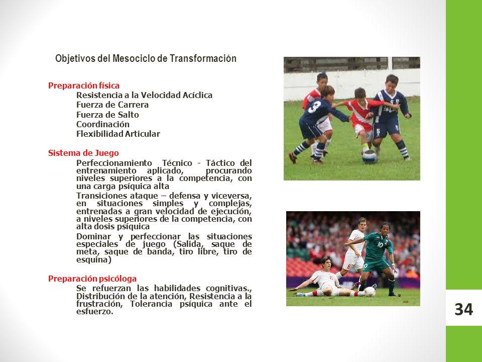 Objetivos del Mesociclo de Transformación Preparación física Resistencia a la Velocidad Acíclica Fuerza de Carrera Fuerza de Salto Coordinación Flexib