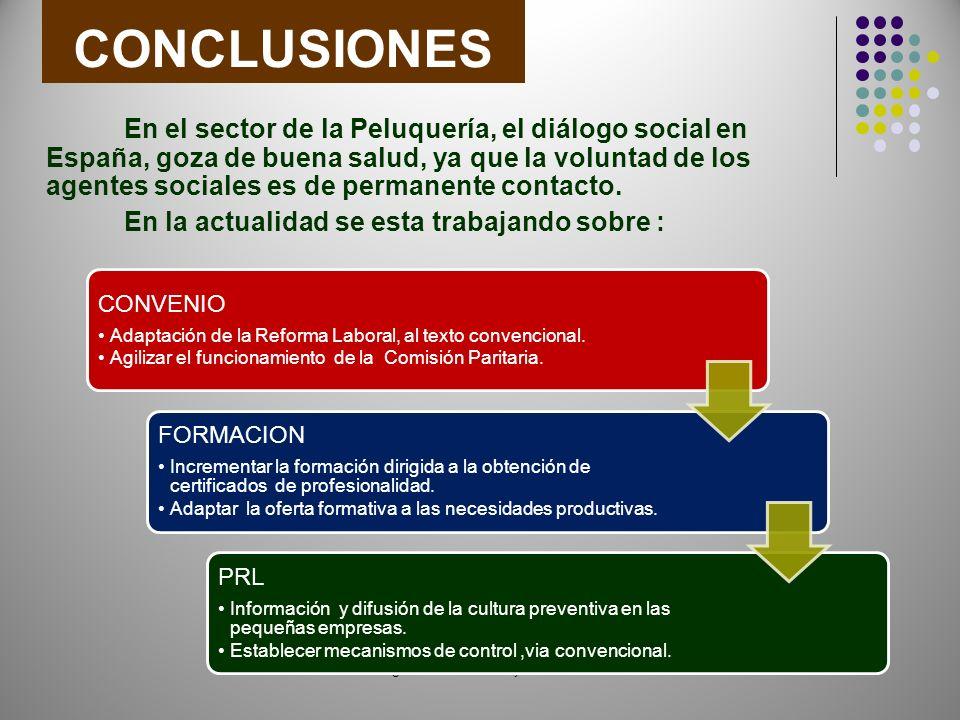 CONCLUSIONES En el sector de la Peluquería, el diálogo social en España, goza de buena salud, ya que la voluntad de los agentes sociales es de permanente contacto.