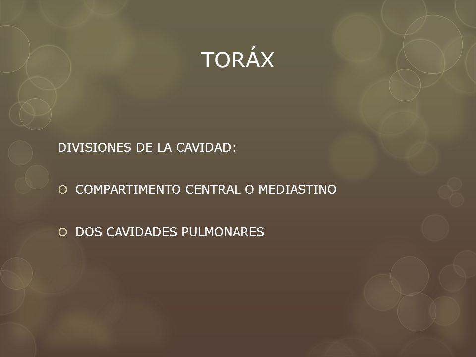 TORÁX DIVISIONES DE LA CAVIDAD: COMPARTIMENTO CENTRAL O MEDIASTINO DOS CAVIDADES PULMONARES