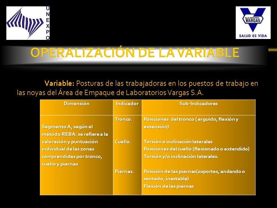 Variable: Posturas de las trabajadoras en los puestos de trabajo en las noyas del Área de Empaque de Laboratorios Vargas S.A.DimensiónIndicadorSub-Ind