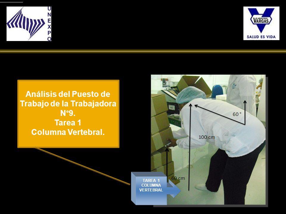 TAREA 1 COLUMNA VERTEBRAL Análisis del Puesto de Trabajo de la Trabajadora N°9. Tarea 1 Columna Vertebral.