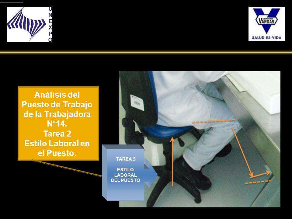 TAREA 2 ESTILO LABORAL DEL PUESTO Análisis del Puesto de Trabajo de la Trabajadora N°14. Tarea 2 Estilo Laboral en el Puesto.