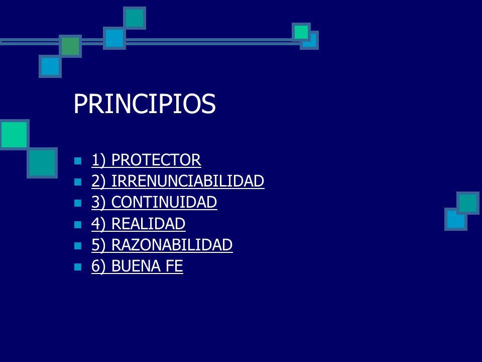 PRINCIPIOS 1) PROTECTOR 2) IRRENUNCIABILIDAD 3) CONTINUIDAD 4) REALIDAD 5) RAZONABILIDAD 6) BUENA FE