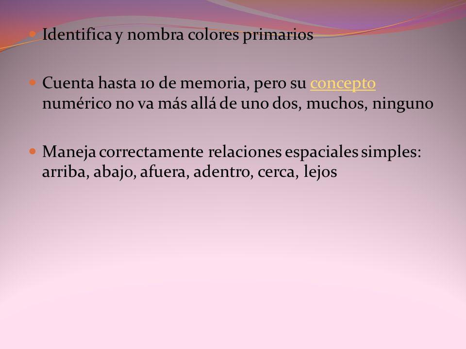 Identifica y nombra colores primarios Cuenta hasta 10 de memoria, pero su concepto numérico no va más allá de uno dos, muchos, ningunoconcepto Maneja