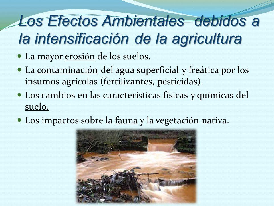 Los Efectos Ambientales debidos a la intensificación de la agricultura La mayor erosión de los suelos.erosión La contaminación del agua superficial y