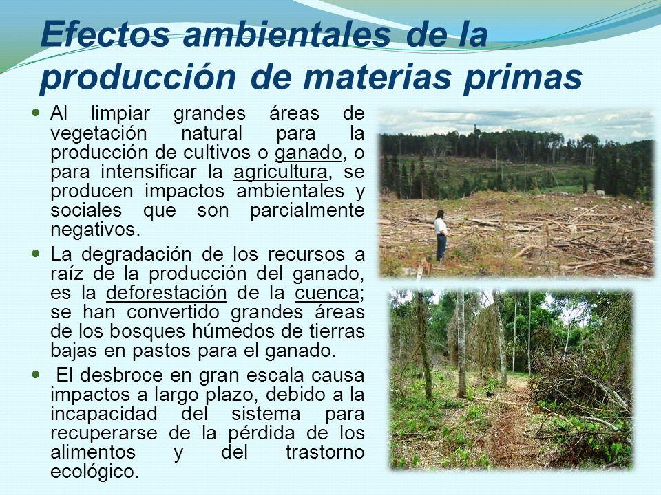 Efectos ambientales de la producción de materias primas Al limpiar grandes áreas de vegetación natural para la producción de cultivos o ganado, o para